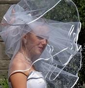 veil choice